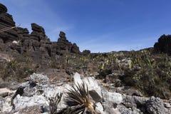 Crystal Valley montering Roraima arkivfoto