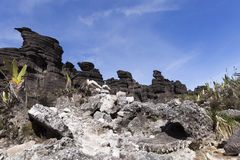 Crystal Valley montering Roraima royaltyfria foton