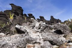 Crystal Valley montering Roraima royaltyfri bild