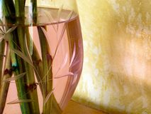 Crystal Vase Close Up rosa immagini stock