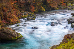 Crystal water of mountain creek in Nikko Stock Images