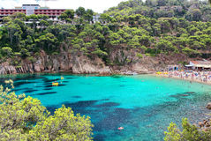 Crystal waters close to the beautiful beach of Aiguablava in Begur village, Mediterranean sea, Catalonia, Spain Stock Photo
