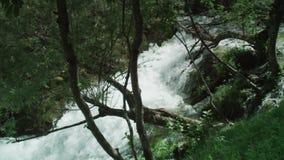 Mountin springs