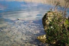 Crystalclear грунтовые воды Стоковое Изображение