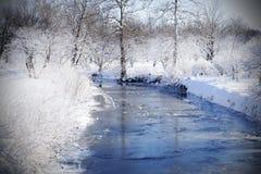 Crystalized зрение зимы в древесинах с заводью Стоковые Изображения RF