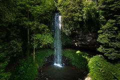 Crystall Shower Falls. From bridge, in Dorrigo, NSW, Australia stock photography