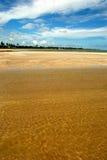 Crystalline green sea in Alagoas. Brazil Stock Photography