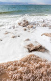 Crystalline salt on beach of Dead Sea Stock Photos