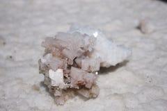 Crystallized Salt Royalty Free Stock Image