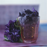 Crystallized violets. Food, gastronomy, cuisine,cookery Royalty Free Stock Photos