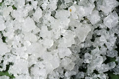 Crystals of coarse seasalt #2 Stock Image