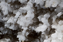Crystals of gypsum royalty free stock photography