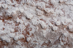 Crystals of White Deposit on Red Desert Rocks. In Dry Wash Royalty Free Stock Image