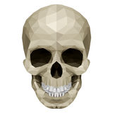 Crystul skull Royalty Free Stock Image