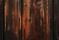 CryWood 02 Immagine Stock Libera da Diritti