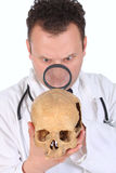 CSI doc close-up. Close-up of young crime scene investigation doctor exam human skull for some clue isolated on white background Royalty Free Stock Photography