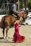 CSIO BARCELONA 2014 - FLAMENCO EQUESTRIAN EXHIBITION Royalty Free Stock Photos