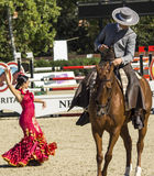 CSIO BARCELONA 2014 - FLAMENCO EQUESTRIAN EXHIBITION. CSIO Barcelona, 103rd International Jumping Competition. Furusiyya FEI Nations Cup Royalty Free Stock Photography
