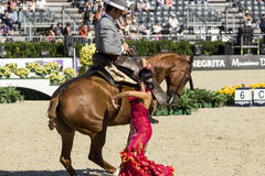 CSIO BARCELONA 2014 - FLAMENCO EQUESTRIAN EXHIBITION Stock Images
