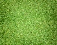 Césped verde de los campos de golf Imagen de archivo libre de regalías