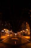CTA火车在芝加哥在夜生活样式的晚上 库存图片