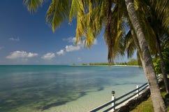 Côte d'île d'Anegada Photographie stock libre de droits