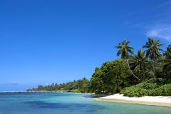 Côte de l'Océan Indien Images stock