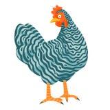 Cętkowanego kurczaka śmieszna wektorowa ilustracja Obraz Royalty Free