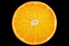 Ctrus-Fruchtorange auf Schwarzem stockbilder
