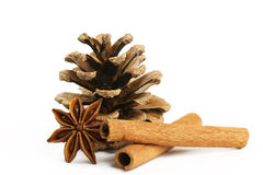 Ctwo cinnamon sticks star anise and conifer cone Stock Photos