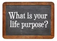 ¿Cuál es su propósito de la vida? imagen de archivo libre de regalías