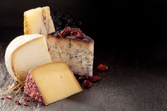 Cuñas del queso gastrónomo en fondo oscuro Fotos de archivo