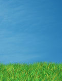 Céu azul de grama verde Fotos de Stock Royalty Free