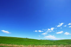 Céu azul e campo verde Fotos de Stock Royalty Free