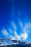 Céu burst-1 da noite Foto de Stock