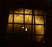 Cu Chi tunel z metrem kopiącym out Zdjęcia Royalty Free