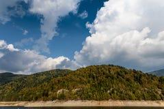 Céu e floresta Fotografia de Stock