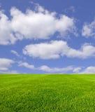 Céu e grama Fotos de Stock Royalty Free