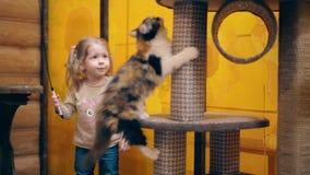 CU, 4k: La madre joven y poca hija dulce están jugando con los gatitos almacen de metraje de vídeo