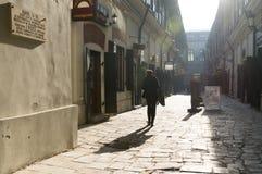 Cu Tei, Bucarest, Roumanie de Hanul Image libre de droits