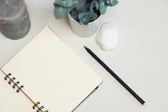 Cuaderno abierto con la pluma negra, la planta verde, la piedra y la vela imagen de archivo