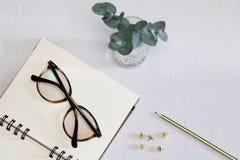 Cuaderno abierto con las gafas, la pluma, los pernos de oro y la planta verde imagenes de archivo
