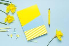 cuaderno Amarillo-azul, pluma, clips, narciso de los narcisos de las flores de la primavera en fondo azul Mesa femenina, escritor imágenes de archivo libres de regalías