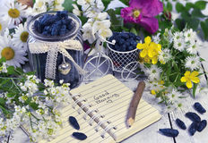 Cuaderno con buena mañana del texto, baya de la madreselva en tarro del vintage y flores Foto de archivo