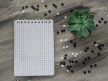 Cuaderno de la escuela con la flor en la tabla gris De nuevo a escuela Imagen de archivo libre de regalías