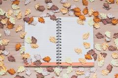 Cuaderno espiral con las hojas de arce en el fondo de madera Imagen de archivo