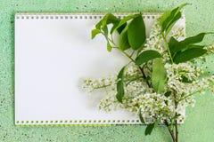 Cuaderno y rama floreciente de la cereza de pájaro imagen de archivo