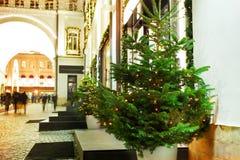 Cuadrado adornado con las guirnaldas y los árboles de navidad Fotos de archivo libres de regalías