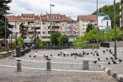 Cuadrado central con el pavimento concreto en el centro de la ciudad de la ciudad moderna Ramnicu Valcea Destino rumano del viaje fotografía de archivo libre de regalías