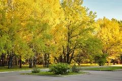 Cuadrado de ciudad en follaje de oro del otoño Imagen de archivo